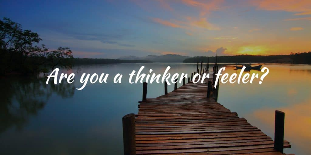 Are you a thinker or are you a feeler? quiz by @karlstyn. Learn more about yourself today at Karlstyn.com's blog. Daily quizzes and selfies! IG 👉@karlstyn 💗